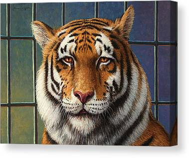 African Tiger Canvas Prints