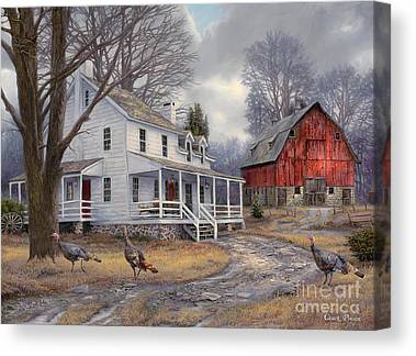 Turkeys Canvas Prints