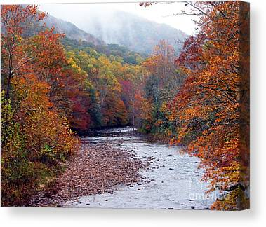 Rushing Mountain Stream Canvas Prints
