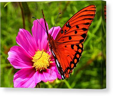 Flutterby Canvas Prints