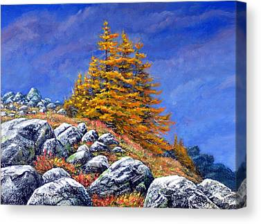 Mount Wilson Canvas Prints