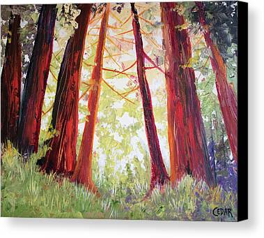 Sequoias Paintings Limited Time Promotions