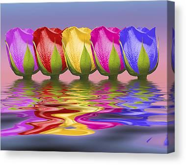 Rainbow Rose Canvas Prints