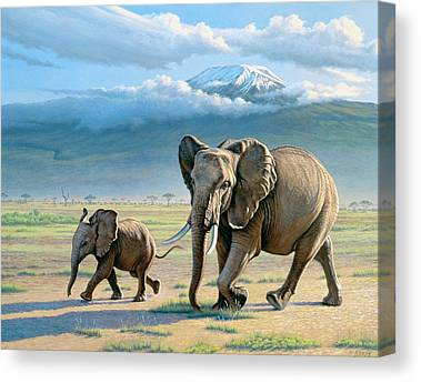 Mount Kilimanjaro Canvas Prints