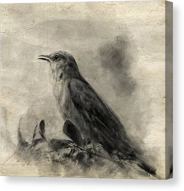 Mockingbird Drawings Canvas Prints