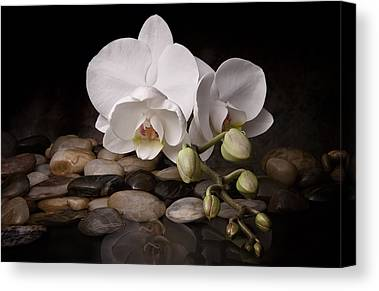 Blooming Canvas Prints
