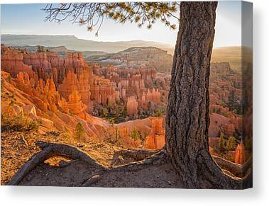 Bryce Canyon National Park Canvas Prints