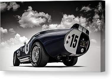 Shelby Canvas Prints