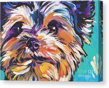 Yorkshire Terrier Canvas Prints