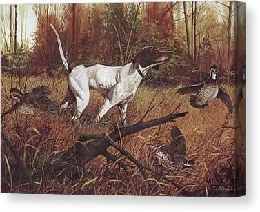 Northern Bobwhite Canvas Prints