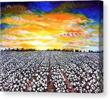 Cotton Field Canvas Prints
