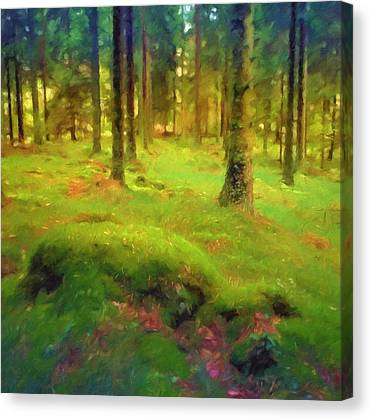 Mossy Forest Canvas Prints