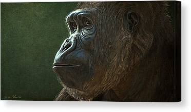 Gorillas Canvas Prints