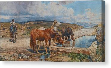 Stone Trough Canvas Prints