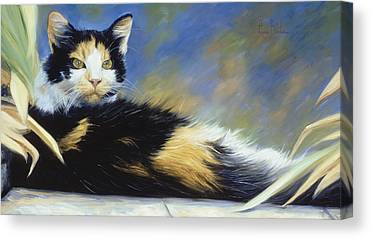 Calico Cats Canvas Prints