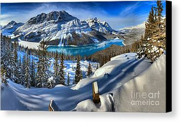 Winter Scene Limited Time Promotions