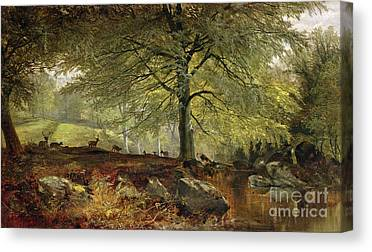 Foraging Canvas Prints