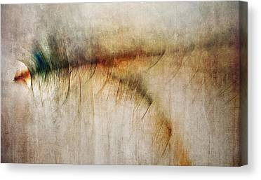 Fire Walk With Me Canvas Prints