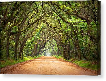 Charleston Canvas Prints