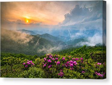 Pink Sunrise Canvas Prints