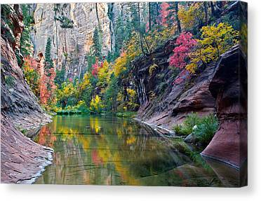West Fork Canvas Prints