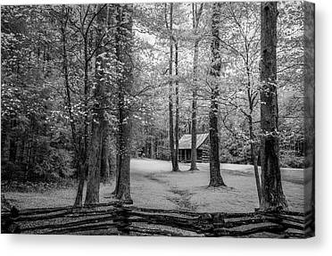 Log Cabin Photographs Canvas Prints