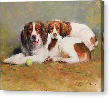 Dog With Tennis Ball Canvas Prints