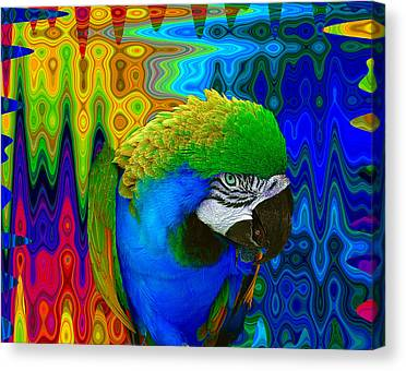Macaws Canvas Prints