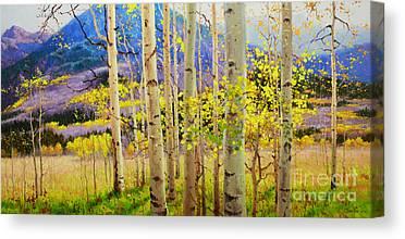 Aspen Canopy Canvas Prints
