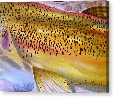 Color Me Trout Canvas Prints