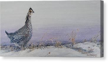Prairie Chicken Canvas Prints