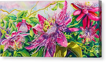 Passionflower Paintings Canvas Prints
