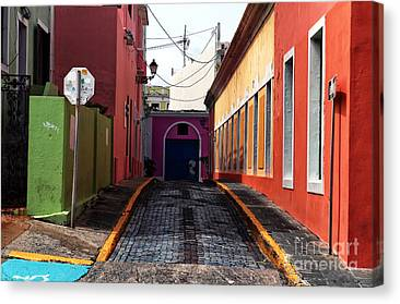 Artists Of Puerto Rico Canvas Prints