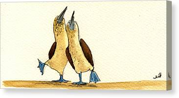 Sea Birds Canvas Prints