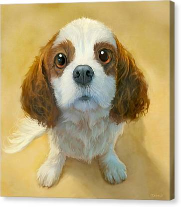 Dog Portrait Canvas Prints