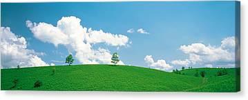Aesthetic Landscape Image Canvas Prints