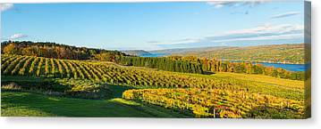 Keuka Canvas Prints