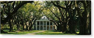 Oak Alley Plantation Canvas Prints