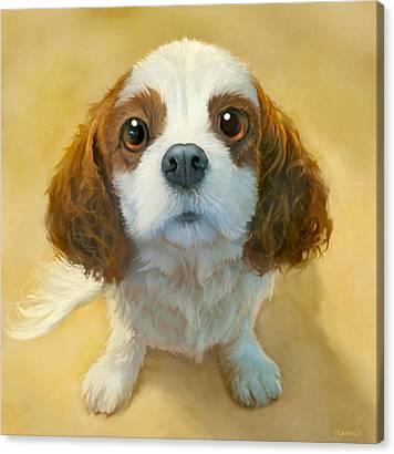 Pet Portraits Canvas Prints