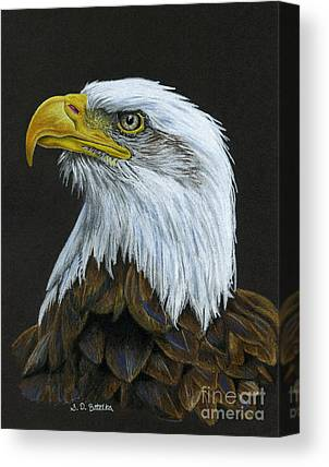 Drawing Of Eagle Canvas Prints