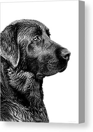 Hunting Dog Canvas Prints