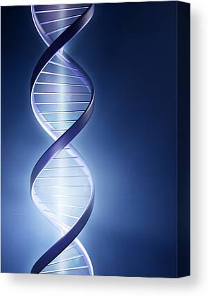 Genetics Canvas Prints