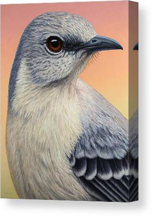 Mockingbird Canvas Prints