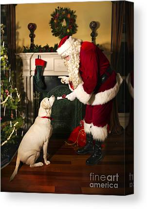Attentive Labrador Dog Canvas Prints