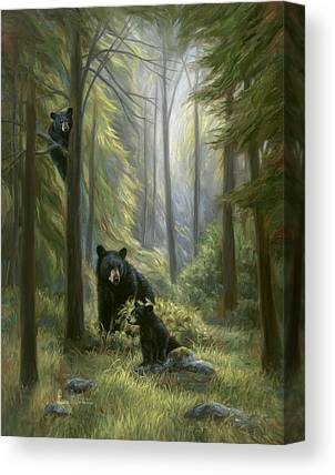 Black Bears Canvas Prints