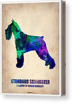 Standard Schnauzer Canvas Prints