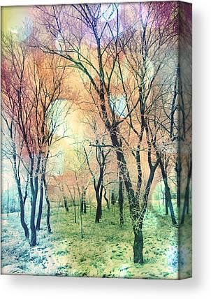 Pink Black Tree Rainbow Photographs Canvas Prints