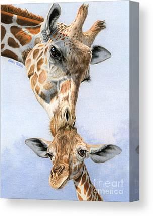 Zoology Canvas Prints
