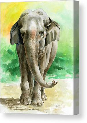 Asian Animals Canvas Prints