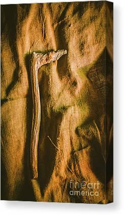 Paleolithic Canvas Prints